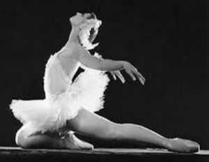 la-muerte-cisne